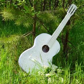 свадебная гитара
