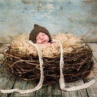 Гнездо для фотосессии