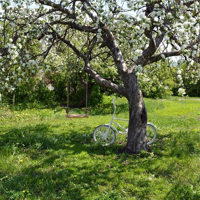Белый свадебный велосипед