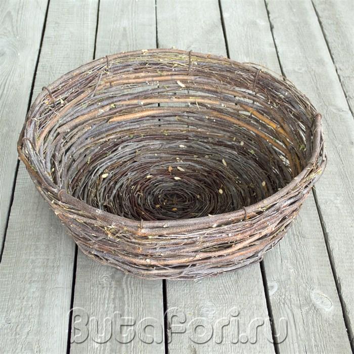Гнездо из березовых веточек