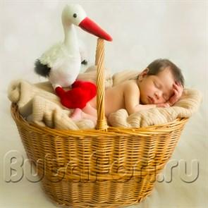 корзина плетеная из лозы для newborn съемки